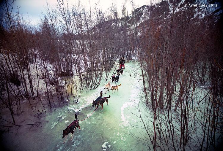 Lance Mackey, Yukon Quest
