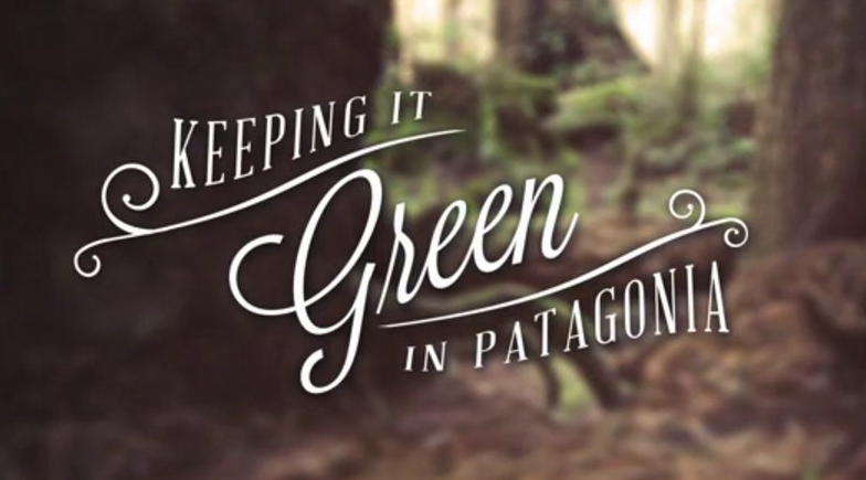 Keeping it Green in Patagonia Screenshot
