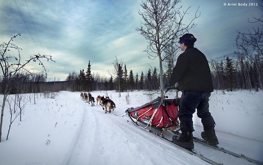 Allen Moore, Yukon Quest
